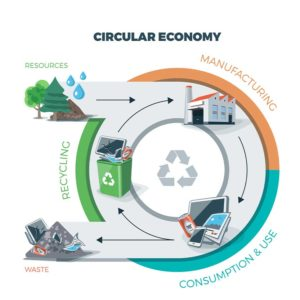 drawing of the circular economy cycle concept